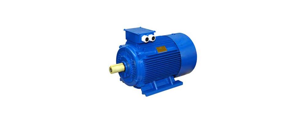 Motori elettrici Seipee